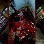 Short Japanese Horror Film of Youtuber Nana825763: 'My House Walkthrough'