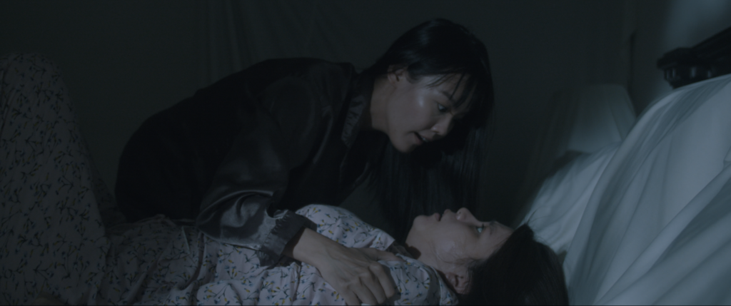 Two Sisters Film Review