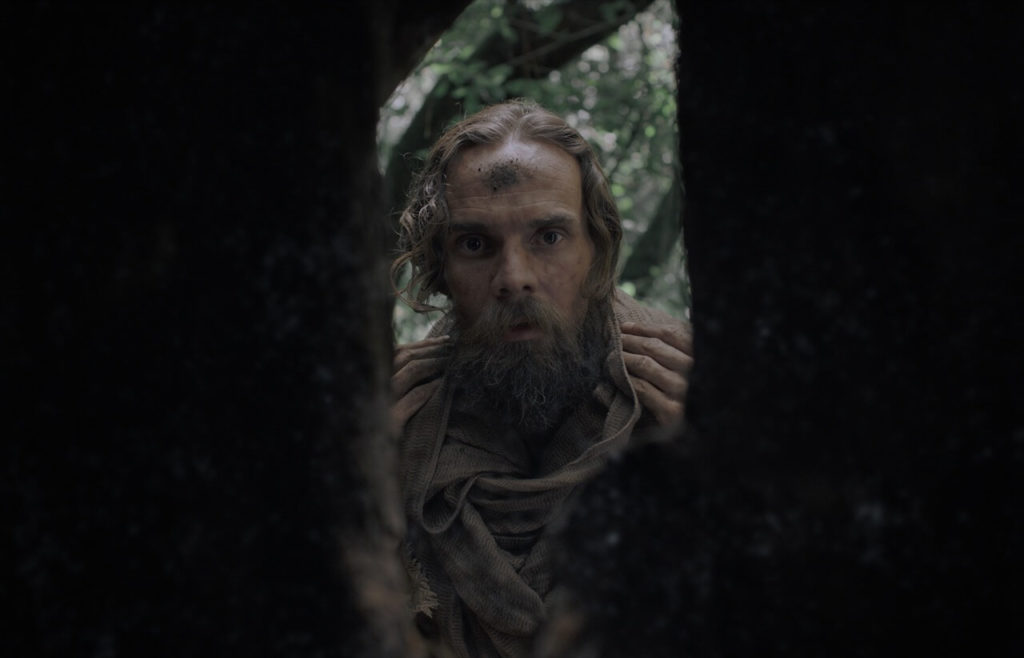 In the film Gaia, Barend looks deeply into the hole in the side of a tree